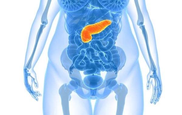 Стеатоз поджелудочной железы лечение