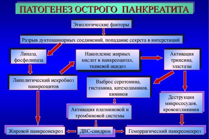 Этиология и патогенез панкреатита
