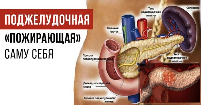 симптомы и признаки острого и хронического панкреатита
