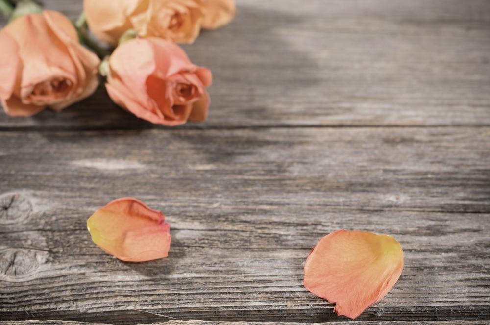 розы, грусть