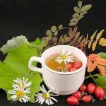 Фитотерапия при панкреатите: обзор рецептов
