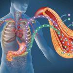 Каков прогноз после операции при панкреонекрозе поджелудочной железы