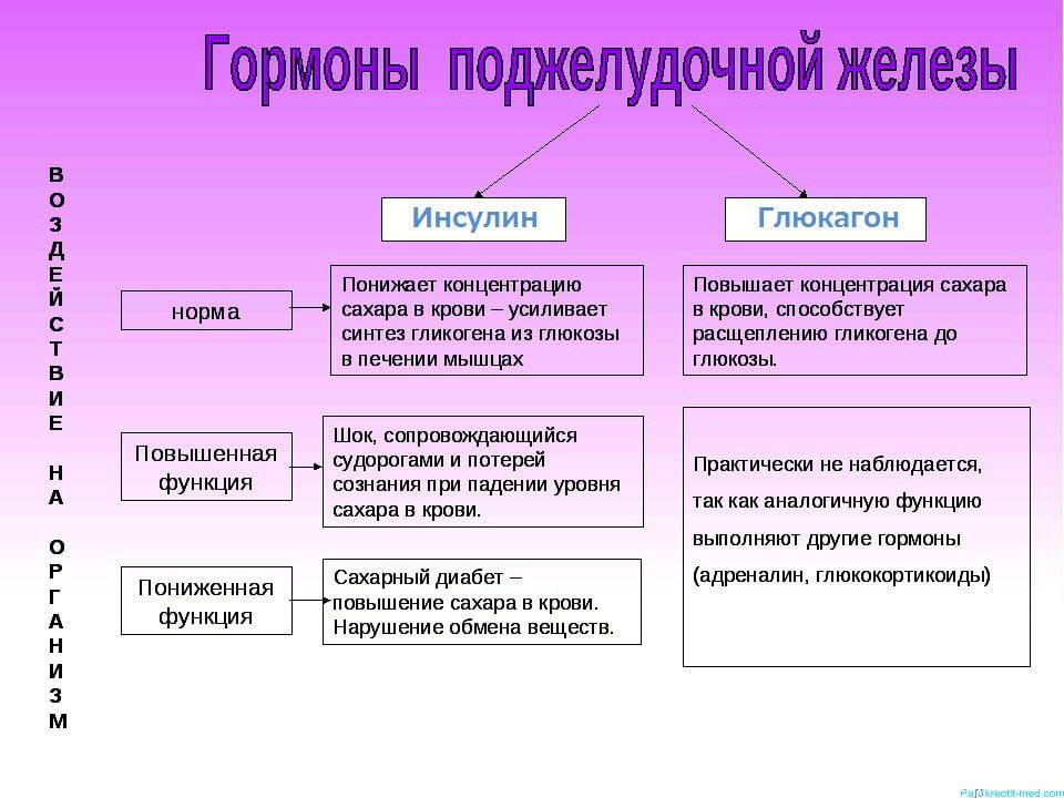 Заболевание поджелудочной железы: симптомы и лечение. Диета при заболевании поджелудочной железы