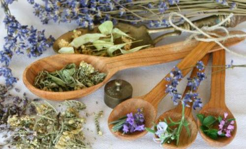 Лечение поджелудочной железы лекарственными травами