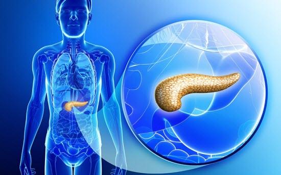 Можно ли пить Аллохол при панкреатите: состав, инструкция и противопоказания