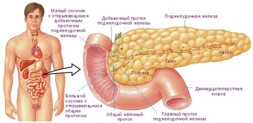 indurativnyj-pankreatit1