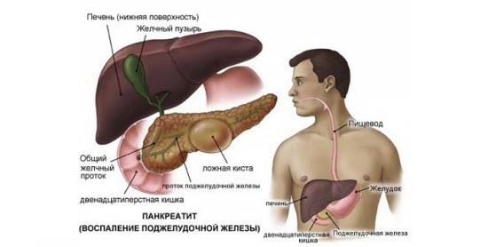 Диета при жировой дистрофии печени