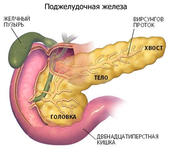 Как лечить панкреатит поджелудочной железы лекарства лучшие